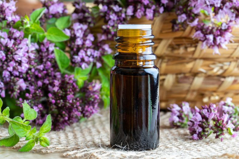 What Are The Best Uses For The Essential Oil Lavender?