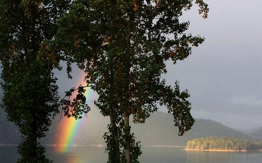 Rainbow – Aromatherapy Session